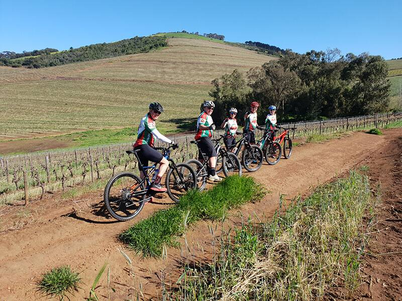 Vineyard E-Bike Meander